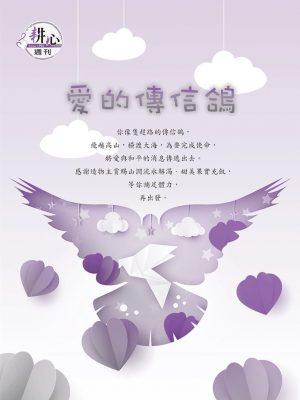 愛的傳信鴿