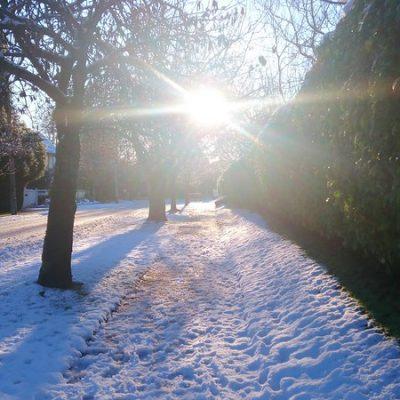 1213期冬日裡有煦煦陽光